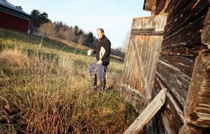 – Visst är det mycket jobb med att vara bonde, men jag stortrivs, säger Pelle Frisk.