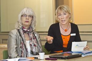 Undervisningsråden Elisabeth Ritchey och Lotta Hedén presenterade i går Skolinspektionens slutrapport efter flera månader av granskningar av Gävles skolor.– Det finns mycket stora skillnader mellan skolorna, säger Lotta Hedén.