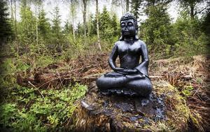 Buddha på stubbe.