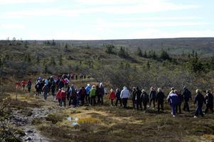 Alla hade inte bråttom och många valde att vandra fem km i lugnt tempo i vacker fjällmiljö.