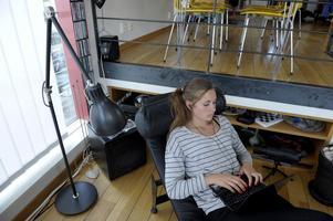 Svenska högskolor erbjuder årligen omkring 3500 fristående kurser, 90 yrkesexamensprogram och 130 generella program på nätet. 88000 studenter läste 2010 hela eller delar av sin utbildning på nätet, vilket motsvarade 24 procent av samtliga studenter.