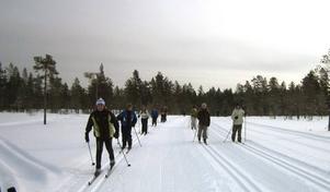 Elever på väg. På väg över myrarna mellan Mångsbodarna och Berga skidar deltagarna i Skolvasan.