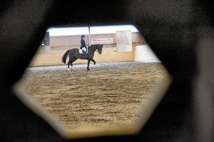 Populärt. Det var flera fulla klasser och mer deltagare än tidigare år när Gyttorps Ridklubb under helgen arrangerade dressyrtävlingar för häst och ponny i division 3.Foto: Sofia Gustafsson
