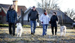 I By träffade tidningens medarbetare promenadkvartetten Britt-Marie Hägerman, Ove och Maud Gustavsson samt Gun Keohane när de kom i sällskap med två trevliga jyckar.