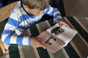 Landets förstaklassare uppmärksammas under Världsbokveckan, 20–26 april. I boklådor anslutna till Svenska bokhandlareföreningen kan 25000 av dem hämta ut en gratis bok.