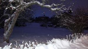 En sen och kall vinterkväll på promenad med hunden, tog jag denna bild.