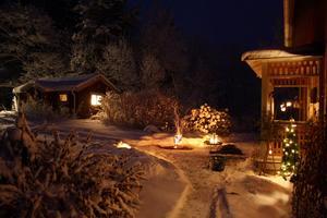 Dagen innan julafton tog jag den här bilden i månskenet