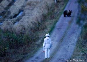 """Ing-Marie Sjödins fotoblogg slog besöksrekord när ryktet om bilden från det här oväntade björnmötet började sprida sig. """"Först var jag ganska missnöjd själv med att det blev mörkt och skakigt. Men oskärpan gör det ju samtidigt lite extra dramatiskt och stämningsfullt"""", säger hon."""