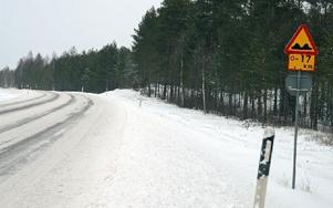 Guppig väg – i 17 kilometer – det är Europaväg 45 mellan Malung och Öje. Foto: Anders Mojanis