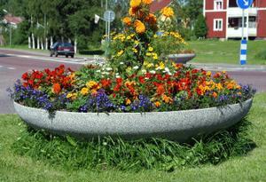 Istället för att blicken dras till blommorna fastnar de på det oklippta gräset kring blomurnorna påpekar kritiska kommuninvånare.