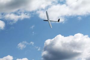 Hittar man rätt vindar kan man hålla sig i luften länge.