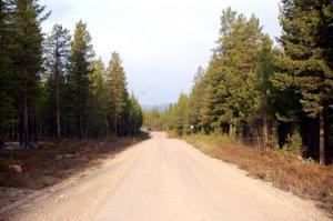 Klimatförändringarna medför ett varmare och blötare klimat. Det ställer högre krav på skogsbilvägarna i länet.