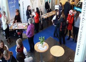 Arbetsmarknadsmässan Karriär 2011 genomfördes på onsdagen i Östersund. Studenter och företagare fick chansen att träffa varandra. Förhoppningsvis får de se mer av varandra i framtiden.