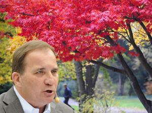 Det råder nu röd höst där Stefan Löfven och hans parti står starka i väljaropinionen. (Bilden är ett montage).