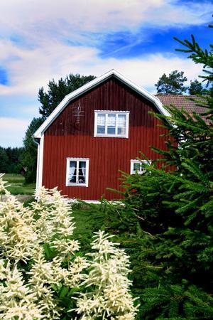 Det var i det här huset i Trödje som rånarna slog till natten mot tisdag. De bröt upp dörren, slog och band paret som bodde där och försvann sedan med pengar och andra värdesaker.