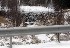 Här syns det väl hur nära E 14 bäverdammen har byggts. Brister dammen kommer tusentals kubikmeter vatten att rusa rakt mot vägen.