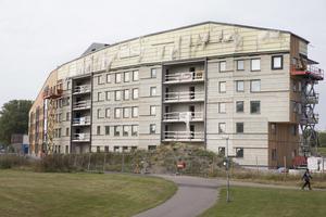 Det svängda trähuset på Nordanby Äng har stans dyraste hyra per kvadratmeter, enligt en sammanställning som Hem & Hyra har gjort. Arkivbild.