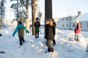 Här såg de älgen. Älgspåren syns lite överallt i snön.