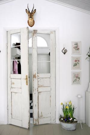 Favorit. Rådjurshuvudet ovanför dörren till hallen är en favorit. Blommorna i zinkbaljan ger inredningen en känsla av vår.