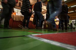 Drygt 3 300 personer besökte Hem- och villamässan på Lugnet i Falun under helgen.