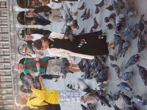 Markusplatsen i Venedig! Hon gillar nog fåglar!