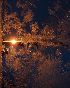 Bilden som jag vill dela med mig av, togs vid en skogssjö i Skinnskatteberg
