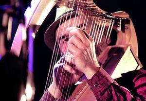 Ale Möller skiftade flitigt mellan instrumenten under konserten. Här spelar han harpa.