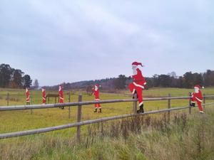 Även om det kan vara svårt att ta in så närmar sig julen och det är bråda tider för tomtarna.