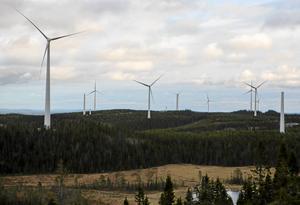 Björkhöjdens vindpark i Ramsele, Sollefteå kommun.