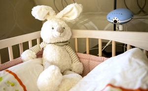 En liten kanin som Ellie fick när hon föddes. Moas kaninis har tappat färgen och är aningen tilltuffsad.