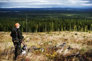 I betänkandet vill Håkan Larsson (C) att det bildas en ny myndighet för viltvårdsfrågor som ser bland annat jakt som en näring.