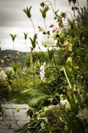 Utsikten i bakgrunden utgör en fond för trädgården som har en blandad karaktär av design och vildvuxen grönska.