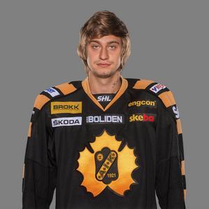4. Kirill Kabanov, Skellefteå      Kom in till Modo förra säsongen och bjöd på både fina dragningar, mål och assist. En stjärna som nu dubblat sin lön i Skellefteå. Frågan är om han är dubbelt så bra?
