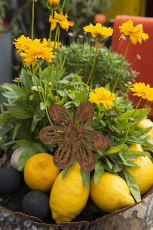 Frukter och grönsaker får gärna vara med och förstärka inredningen med sina färger.