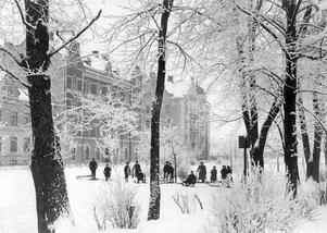Barn och vuxna sparkar på i Oskarsparken. Året var 1903.
