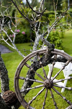 Ett dött träd som står kvar i trädgården som dekorativ effekt. Här kombinerat med ett spinnrockshjul, ser det ut som.