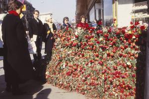 Korsningen Sveavägen-Tunnelgatan där Palme mördades. Under sommaren 1986 växte blommorna till en rund vägg på brottsplatsen.