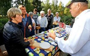 """Gun Landén-Slars och P-O Slars, till vänster, har fullt sjå att ta reda på äpplena på sin släktgård i Utby, Rättvik. I år har de fått sådana mängder att de köpt skalmaskin         och svamptork, och de funderar också på att musta äpplena. """"Men första steget var att få dem identifierade"""", säger Gun, som fick namn på de flesta sorter av pomolog Olle Ridelius. Foto: Johnny Fredborg"""