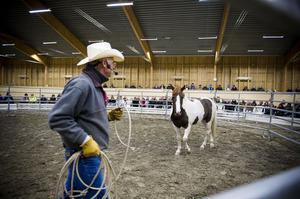 Under föreläsningen arbetade John Moore med ponnyn både i grimma och lös i en liten rund inhägnad.