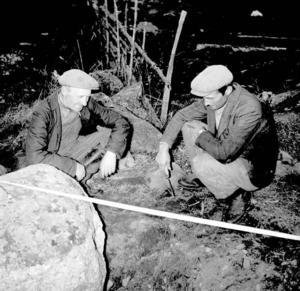 För 50 år sedan. Kärvenborna Joel Sätterberg (Olles pappa) och Birger Eskilsson, vid utgrävningen 1958.  Ett läger hade byggts på platsen och under några veckors tid vände och vreds på varenda sten.