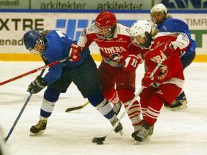 Kamp om pucken mellan Nolby i blått och Timrå i rött.
