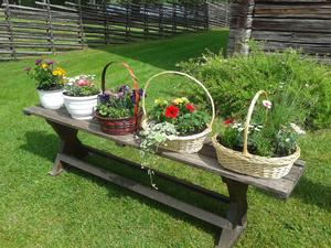 Nationaldagsfirandet i Ramsjö avslutades med blomsterlotteri.