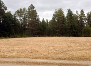 Anrika sågarplan i Älvros var ÄIK:s första hemmaborg från 1931-1952 när det anrika laget flyttade över Ljusnans vatten till Zakrivallen