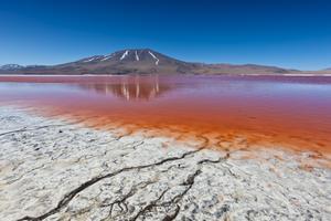 Laguna Colorada i Bolivia.