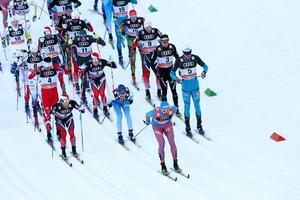 Klungan, anförd av ryske Tour de ski-ledaren Sergej Ustiugov, under inledningen av lördagens klassiska masstart. Längst bak i vitt Jens Burman och Viktor Thorn, Axel Ekström låg ytterligare någon placering längre bak i klungan (och därför utanför bild).