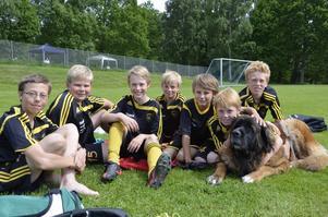 Maskot. Dingtuna GIF från Västmanland har med sig hunden Maja, som enligt P-01 skäller när hon inte gillar matchbilden.