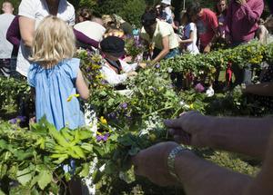 Benjamin Kristiansen, fyra år, från Alnö var en av alla som hjälpte till att smycka midsommarstången på Norra berget med blommor.