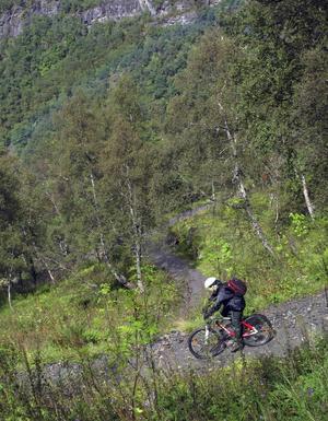 Mountainbiketuren från Myrdal till Flåm lockar många.   Foto: Johan Öberg