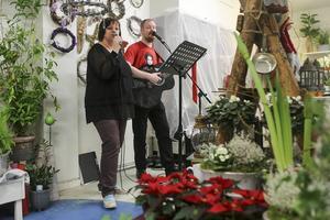 Trubadurparet Anna Norlander och Mats Siljamäki från Hälsingland spelade julsånger bland julblommorna hos Helena Hagberg.