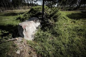 En stor sten utgör ett av hindrena på terrängbanan vid Frösöstallet.